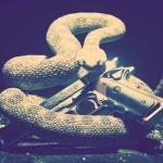 Análisis: Hitman – Absolution